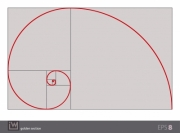 Vector illustration of the golden section (golden ratio), the most important proportion in the art and the nature. Isolated background; the gray background can be omitted or changed. - Golden Section (Golden Ratio)