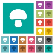 Mushroom multi colored flat icons on plain square backgrounds. Included white and darker icon variations for hover or active effects. - Mushroom square flat multi colored icons