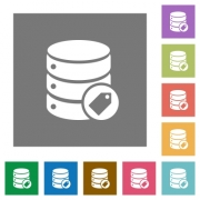 Database tag flat icons on simple color square backgrounds - Database tag square flat icons - Large thumbnail