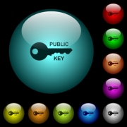 Public key icons in color illuminated spherical glass buttons on black background. Can be used to black or dark templates - Public key icons in color illuminated glass buttons
