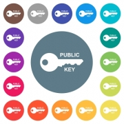 Public key flat white icons on round color backgrounds. 17 background color variations are included. - Public key flat white icons on round color backgrounds