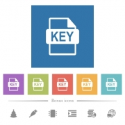 Private key file of SSL certification flat white icons in square backgrounds. 6 bonus icons included. - Private key file of SSL certification flat white icons in square backgrounds