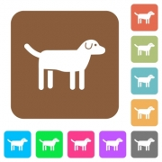 Dog flat icons on rounded square vivid color backgrounds. - Dog rounded square flat icons