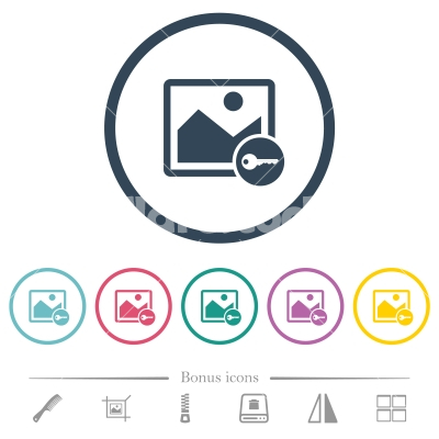 Encrypt image flat color icons in round outlines - Encrypt image flat color icons in round outlines. 6 bonus icons included.