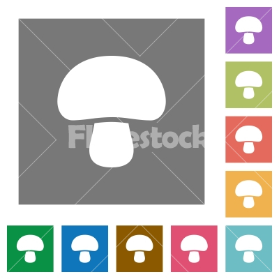 Mushroom square flat icons - Mushroom flat icons on simple color square backgrounds