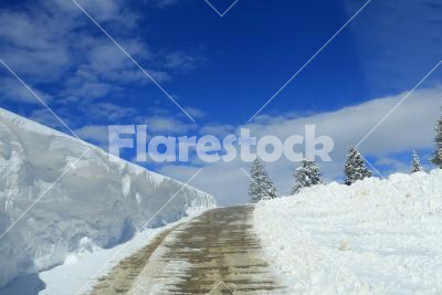 Snowy road - A road leads in the snow