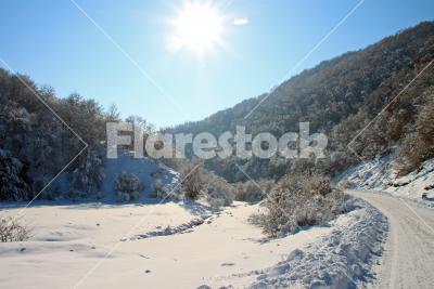 Sunny winter valley - Sunny winter valley with a snowy road