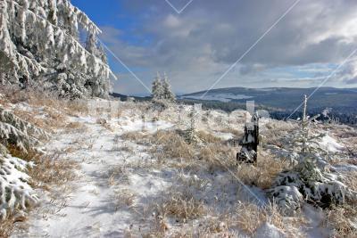 Winter landscape - Winter landscape on a sunny day